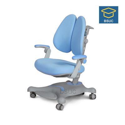 Ghế chống gù DRY-806