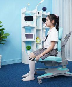 Ghế chống gù cao cấp DRY-810