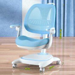 Ghế chống gù cao cấp DSY-1002